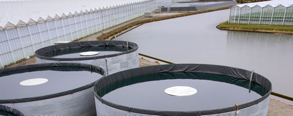 Picture 5 Open top double hull water storage tanks with metal outer shell and inner elastomer foiljpg